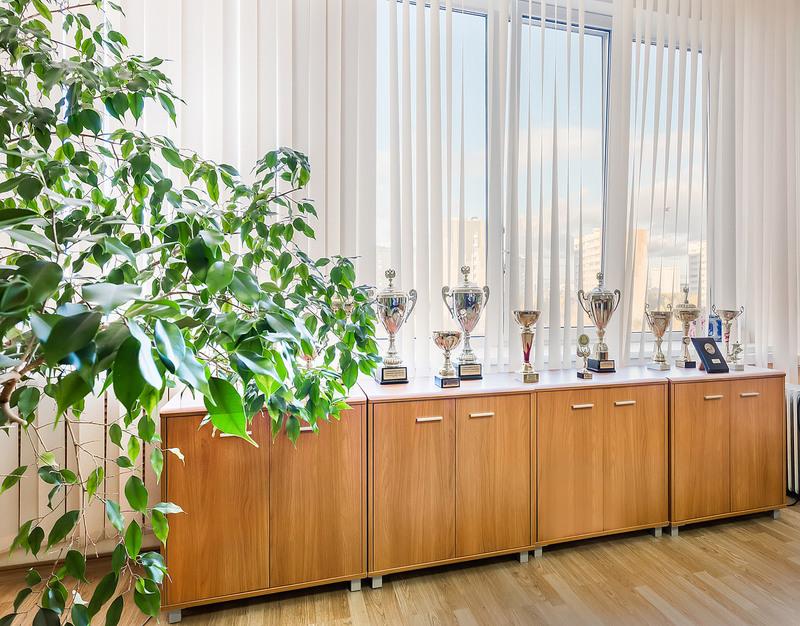 Офисная мебель-Офисная мебель «Модель 51»-фото3