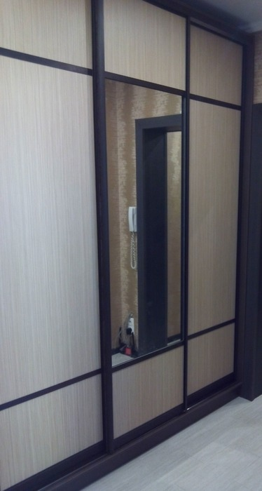 Большой шкаф-купе-Шкаф-купе с зеркалом «Модель 56»-фото7